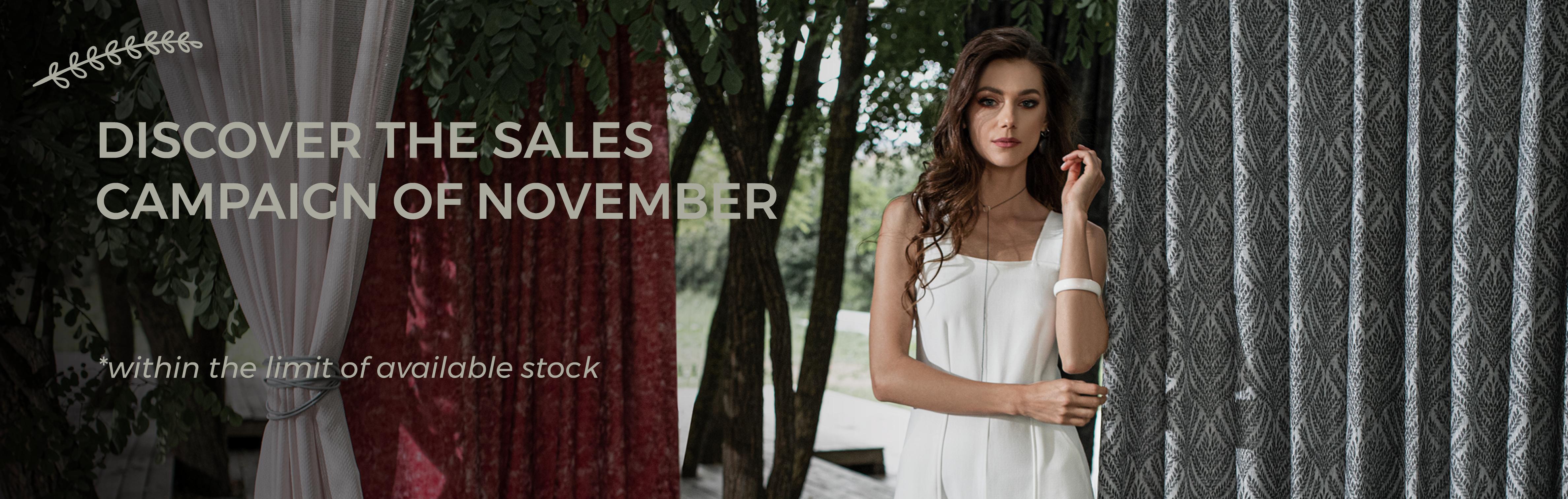 November's Sales Campaign